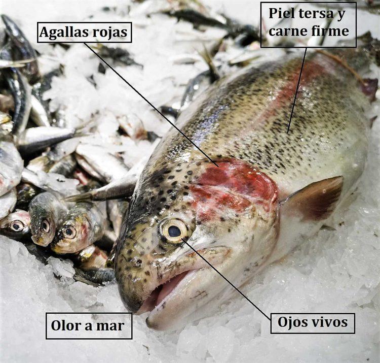 factores pescado fresco