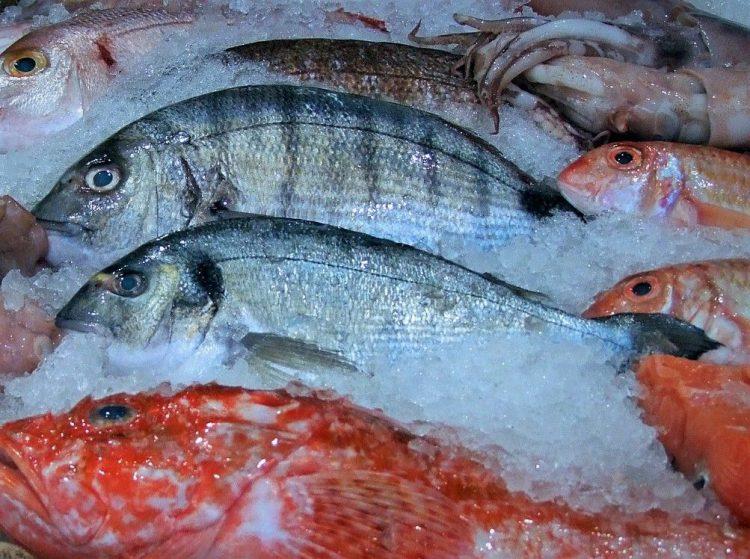 comprobar si pescado es fresco