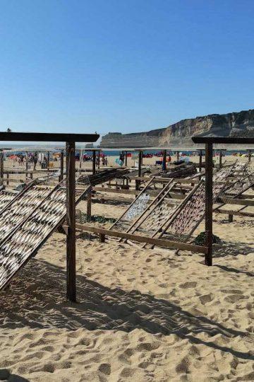 museo del pescado seco nazaré portugal